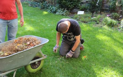 Die Würde des Gartens und die Würde der Menschen, Teil II